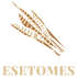 ESETOMES Logo
