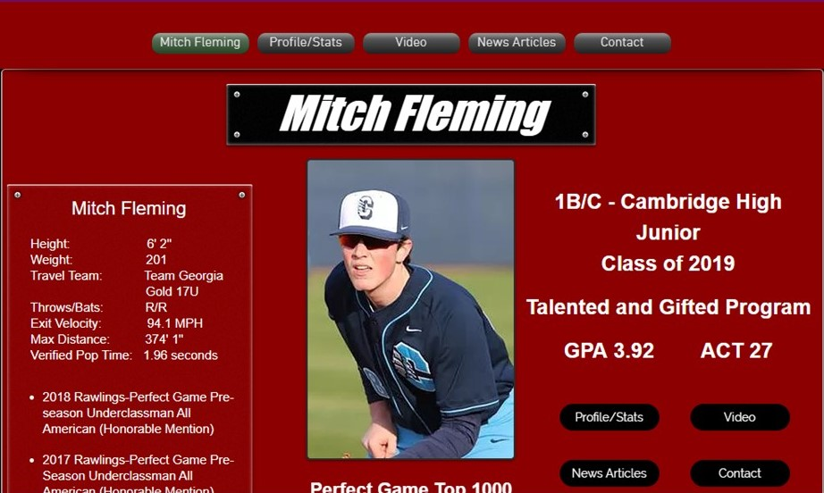 Baseball Player Landing Page