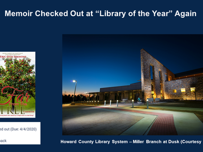 Checkout at Library of the Year