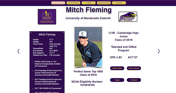 Mitch Fleming Landing Page Screenshot.pn