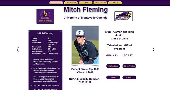 Mitch Fleming Landing Page Screenshot.pn