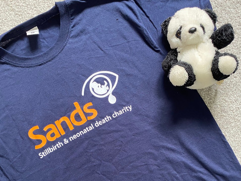 My Story and Why I'm Raising Money for the Sands Charity