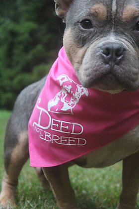 Deed Not Breed Bandana Pink or Black