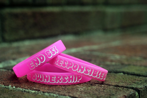 Responsible Ownership Wristband