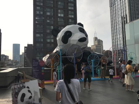 A productive fieldwork on school-to-school collaboration in Chengdu.