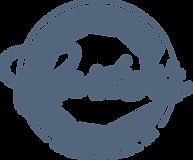 CCS Logo Full Light-800px.png