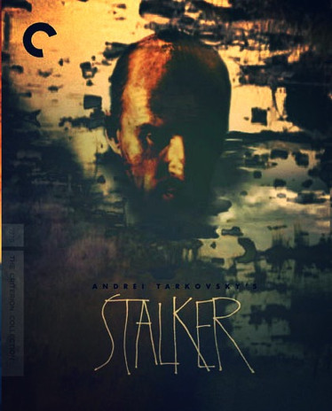 In the Zone: STALKER