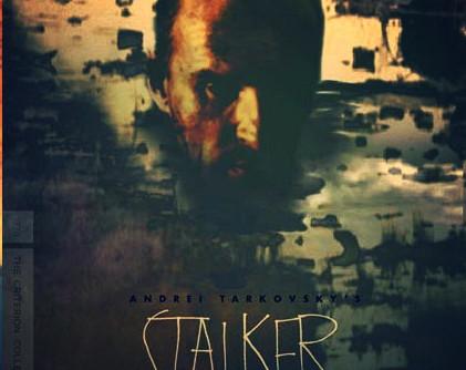 In the Zone: STALKER