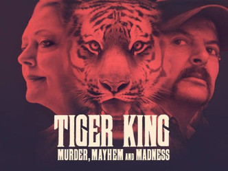 TIGER KING: AN ALL AMERICAN DEBACLE