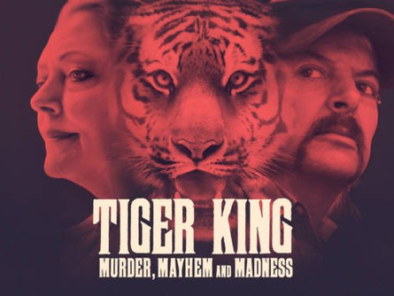 TIGER KING: AN ALL AMERICAN DEBACLE