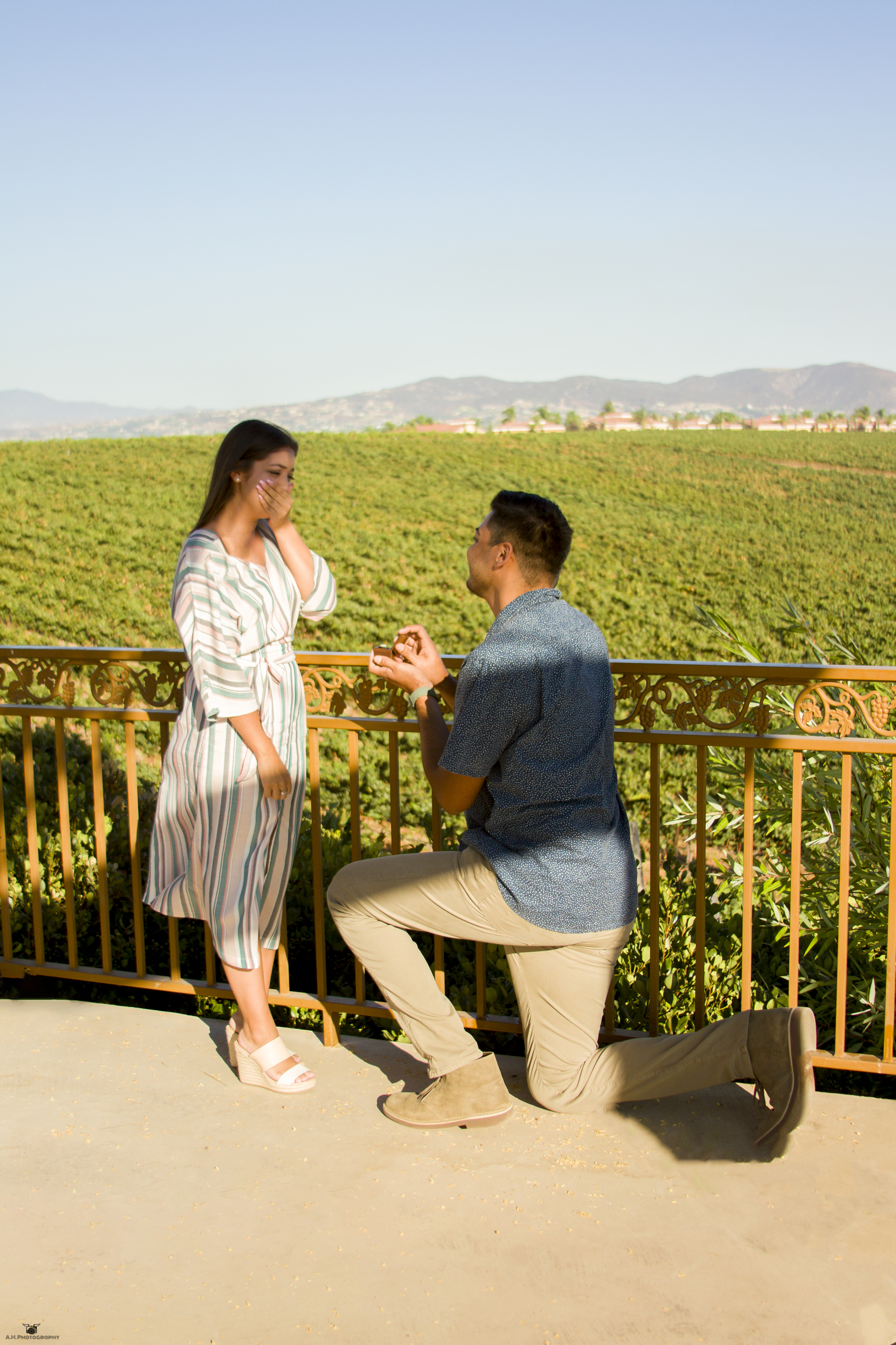 Engagement Proposal-Carter Estate Winery