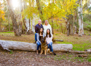 Sunset Family Photoshoot in the woods!