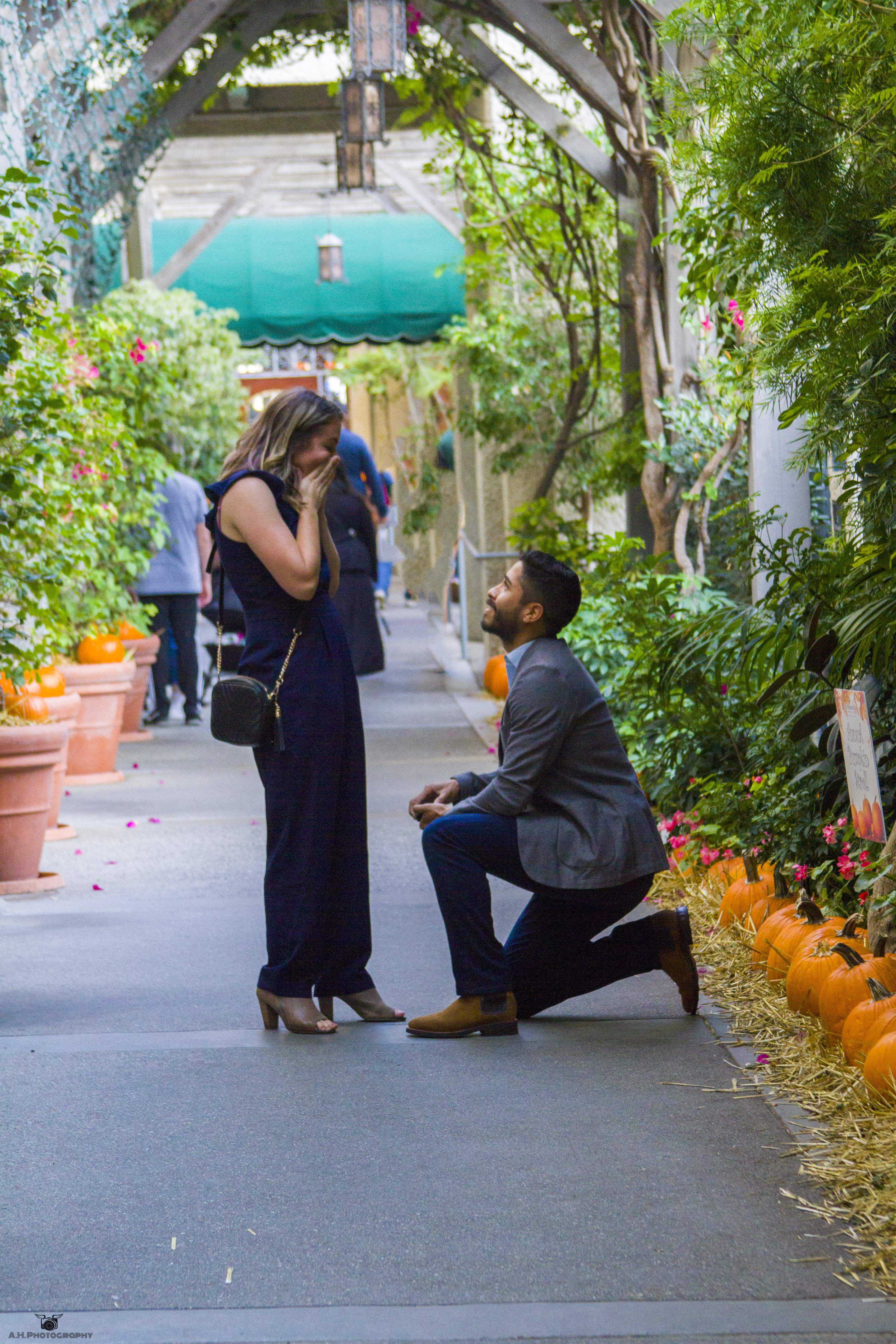 Engagement Proposal Photography 2018