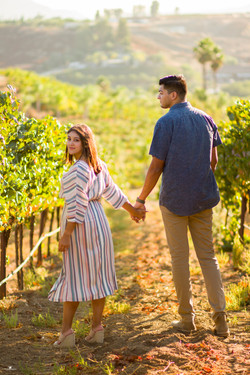 Engagement Photography-Carter Estate Winery