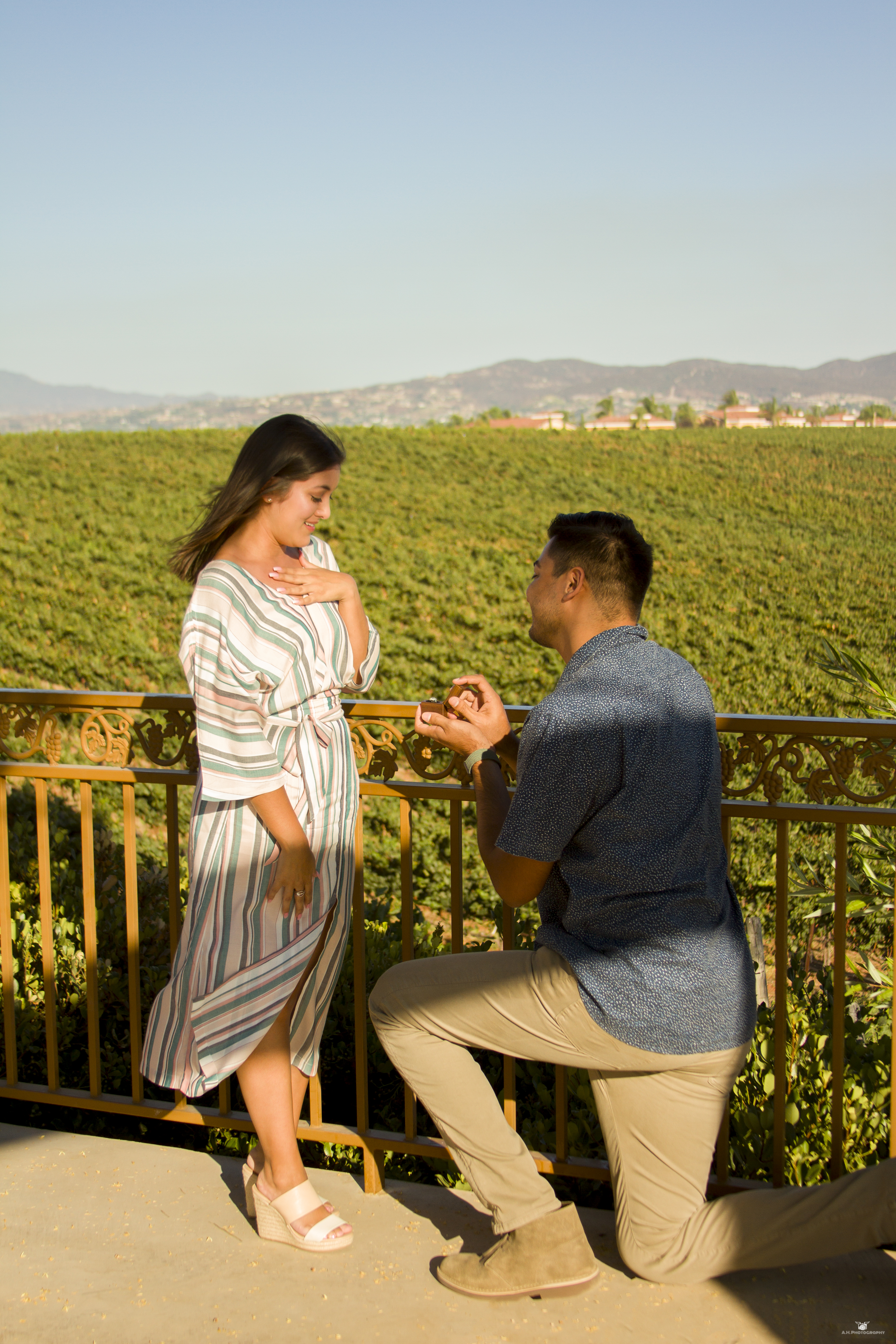 Engagement Proposal- Carter Estate Winery