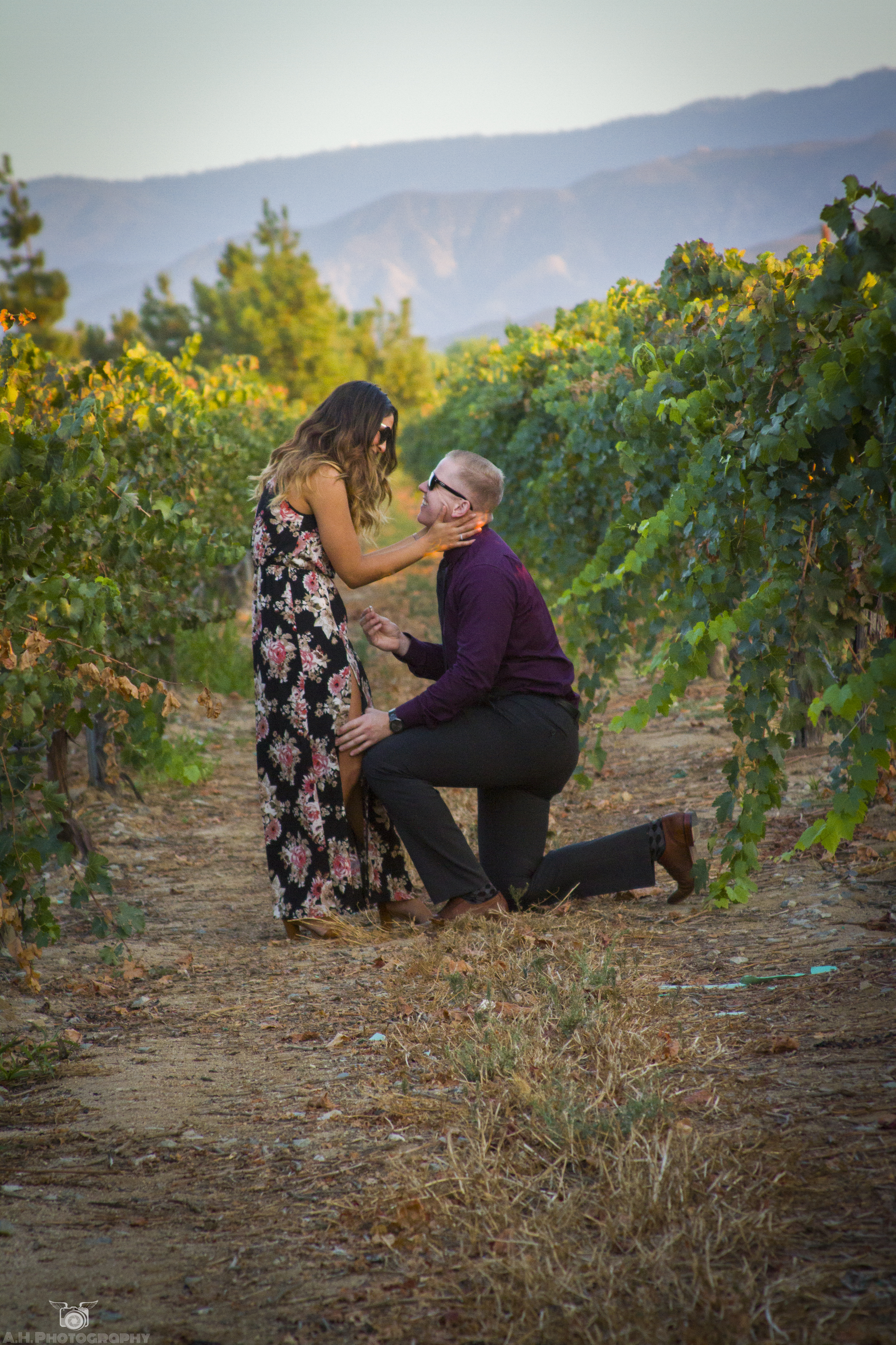 sunset marriage proposal in temecula