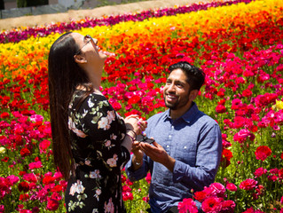 Engagement Proposal at the flower fields in Carlsbad, CA