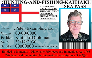 peter example card embassy.png