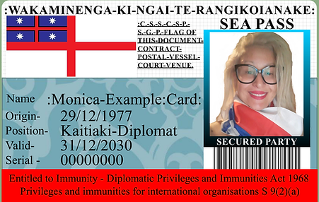 mona example card.png