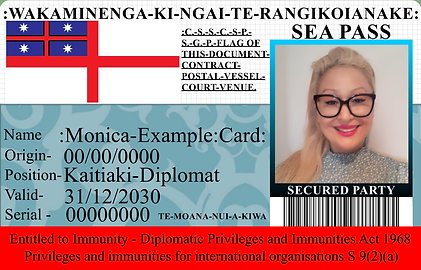 monica example card embassy.png