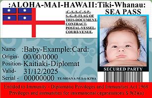 hawaii baby example card.png