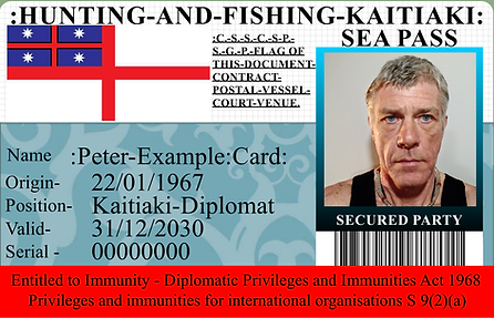 peter example card.png