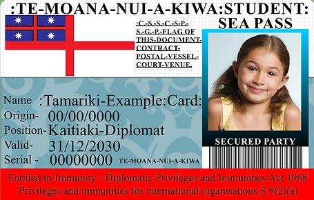 0000 example tamariki.png