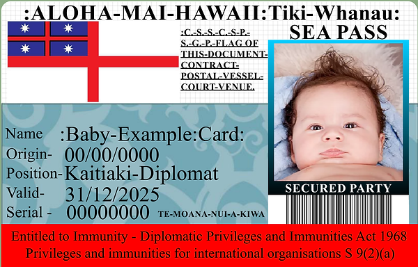 hawaii baby example card.png