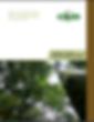 Captura de Pantalla 2020-07-01 a la(s) 3