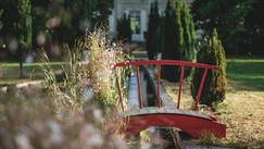 Pont sur la pièce d'eau
