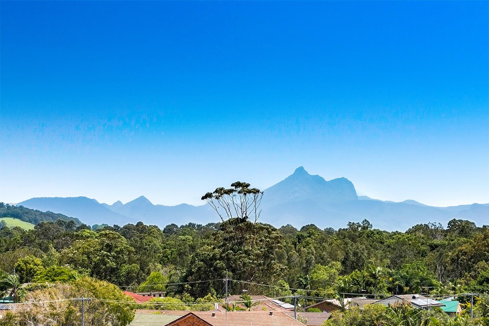 Mount Warning Views
