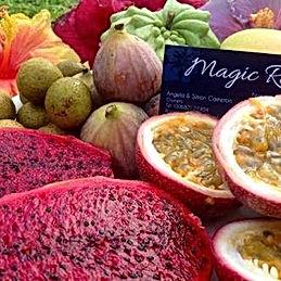 Tropcal fruit, Australian yoga retreat, healthy food, breakfast, yoga breakfast, wellness