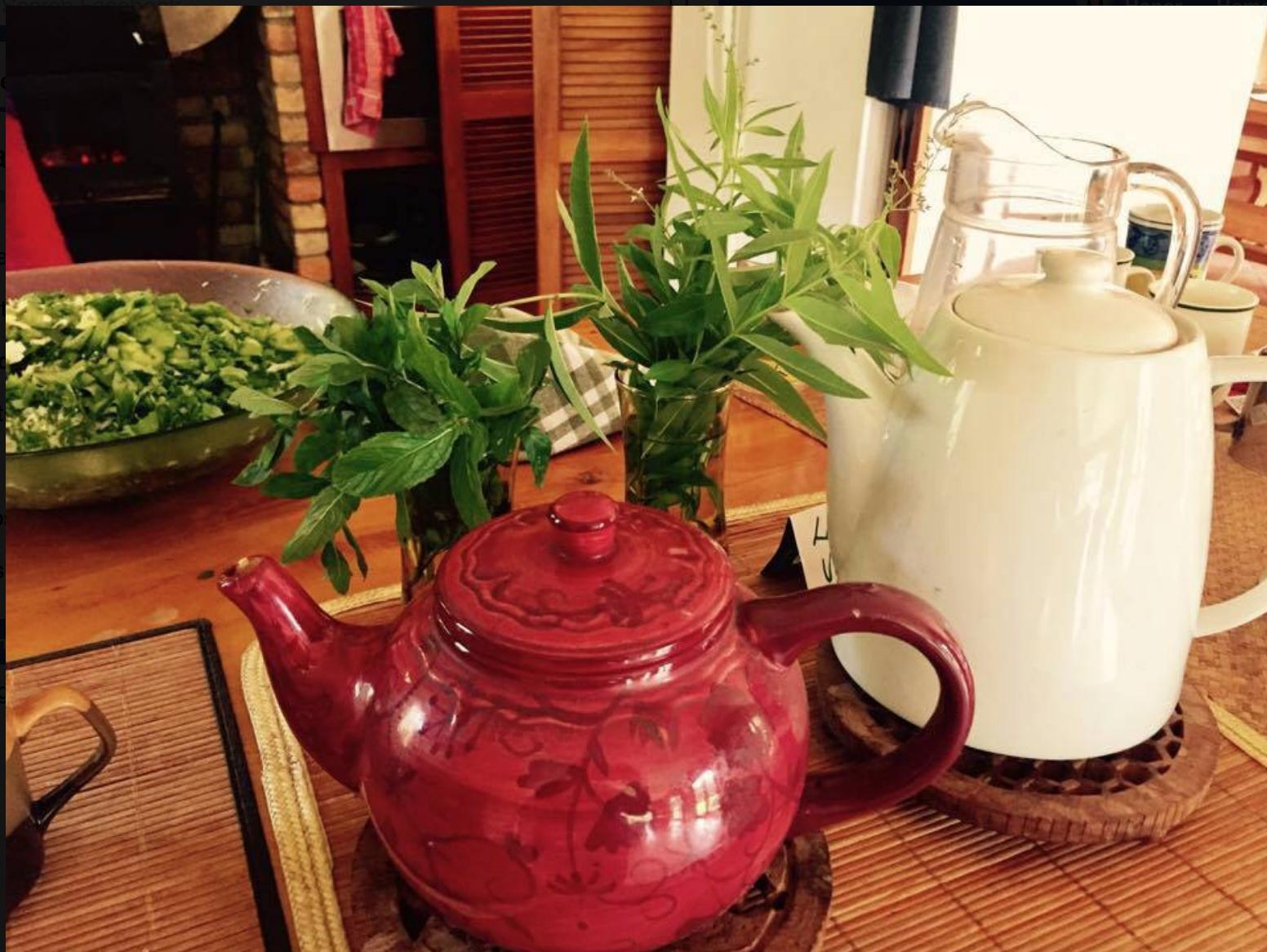 Organic freshly picked herbal teas