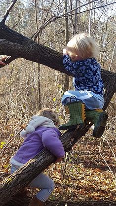 Children in Forest