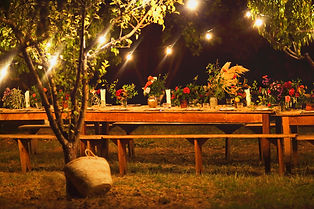 Prepared table for a rustic outdoor dinn
