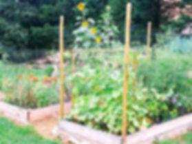 Community Garden 2019-b.jpg