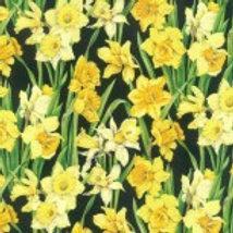 Daffodils 2 A0042 Nutex 89420 102