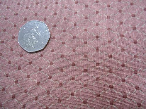 Centenary Pink Dot Nutex  A0233