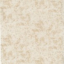 Beige Shadows A0195 Nutex 80090 103