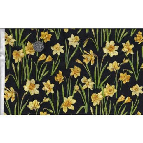 Daffodils 1 A0043 Nutex 89420 101