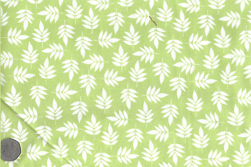 White Leaves on Green A0158