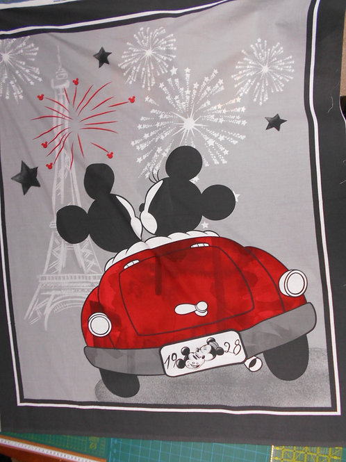 Mickey & Minnie Car Panel Nutex A0126