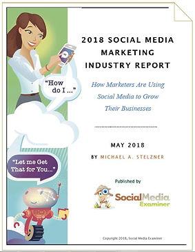 Social Media Examiner Industry Report 20
