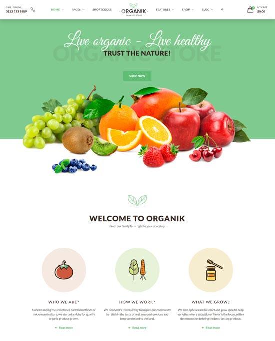 home page toko buah