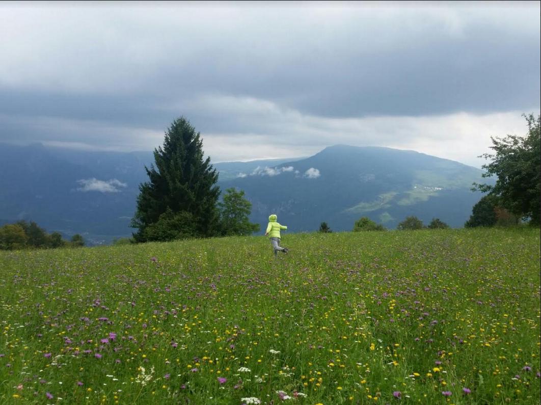 Passo Bordala