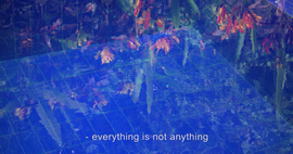 Everything is not anything