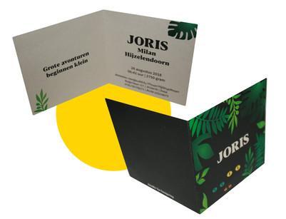 Geboortekaartje Joris