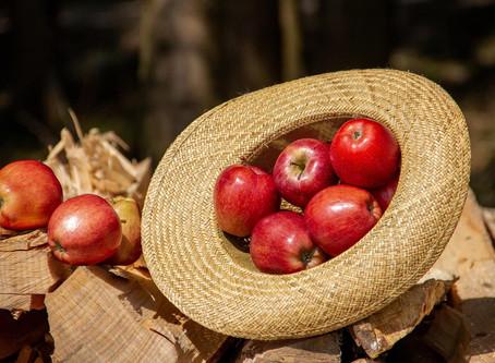Яблочный Спас - народный праздник