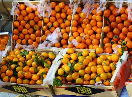 Новый год приходит с мандаринами | New Year Comes with Mandarins