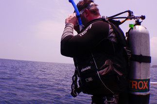 Diver entering the water